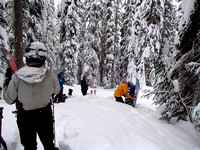 Deep in the treesHeavy snowfall - tough trail breaking - deep powder skiing